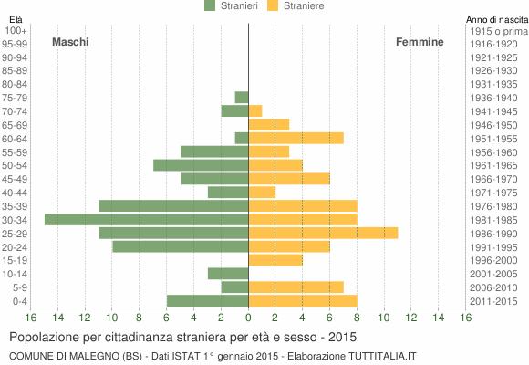 Grafico cittadini stranieri - Malegno 2015