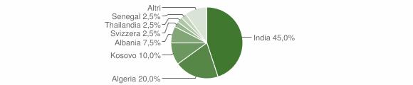 Grafico cittadinanza stranieri - Vigolo 2019