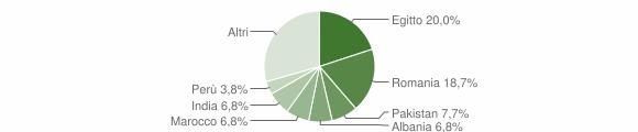 Grafico cittadinanza stranieri - Arzago d'Adda 2018