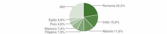 Grafico cittadinanza stranieri - Merlino 2019