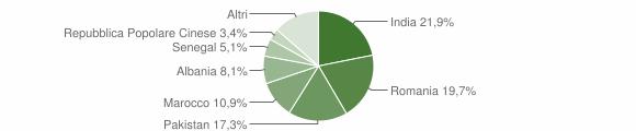 Grafico cittadinanza stranieri - Montello 2019