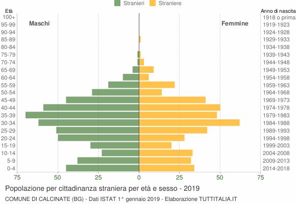 Grafico cittadini stranieri - Calcinate 2019
