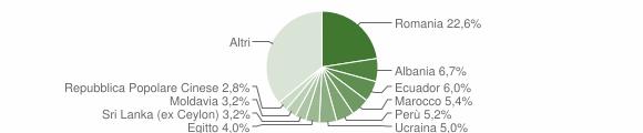 Grafico cittadinanza stranieri - Lesmo 2019