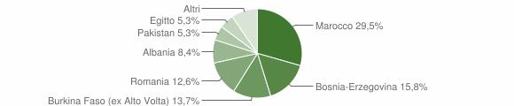 Grafico cittadinanza stranieri - Pezzaze 2009