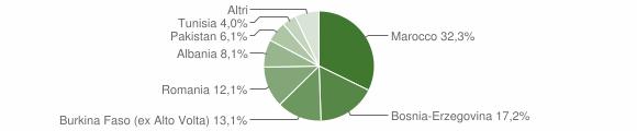 Grafico cittadinanza stranieri - Pezzaze 2010