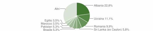 Grafico cittadinanza stranieri - Collebeato 2009