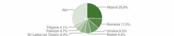 Grafico cittadinanza stranieri - Collebeato 2010