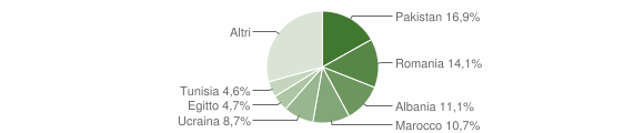 Grafico cittadinanza stranieri - Iseo 2019