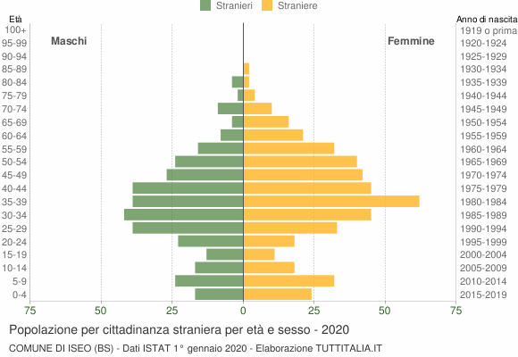 Grafico cittadini stranieri - Iseo 2020