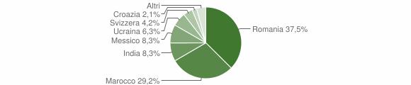 Grafico cittadinanza stranieri - Corteno Golgi 2009