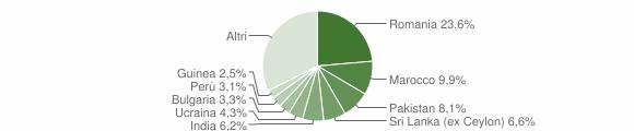 Grafico cittadinanza stranieri - Triuggio 2019