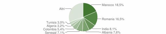 Grafico cittadinanza stranieri - Poncarale 2010