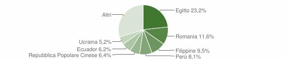Grafico cittadinanza stranieri - Sesto San Giovanni 2019