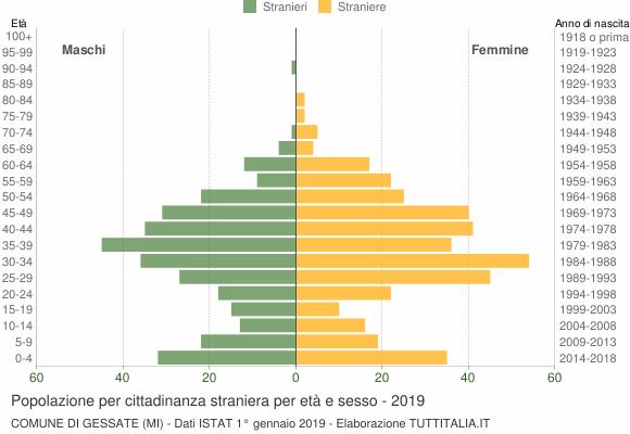 Grafico cittadini stranieri - Gessate 2019