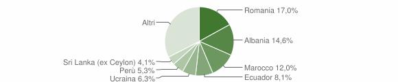 Grafico cittadinanza stranieri - Vimercate 2019