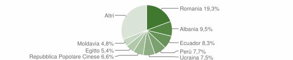 Grafico cittadinanza stranieri - Bareggio 2013