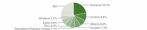 Grafico cittadinanza stranieri - Bareggio 2018