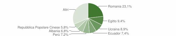 Grafico cittadinanza stranieri - Bareggio 2019