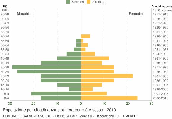 Grafico cittadini stranieri - Calvenzano 2010