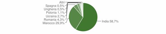 Grafico cittadinanza stranieri - Cigole 2008