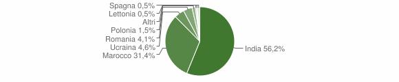 Grafico cittadinanza stranieri - Cigole 2010