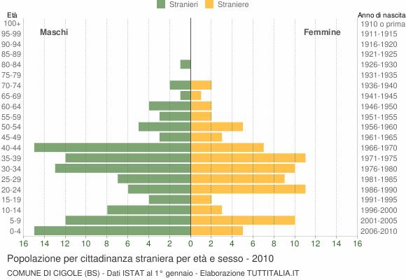 Grafico cittadini stranieri - Cigole 2010