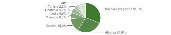 Grafico cittadinanza stranieri - Pumenengo 2013
