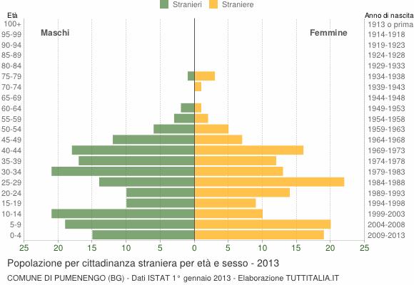 Grafico cittadini stranieri - Pumenengo 2013