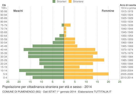 Grafico cittadini stranieri - Pumenengo 2014