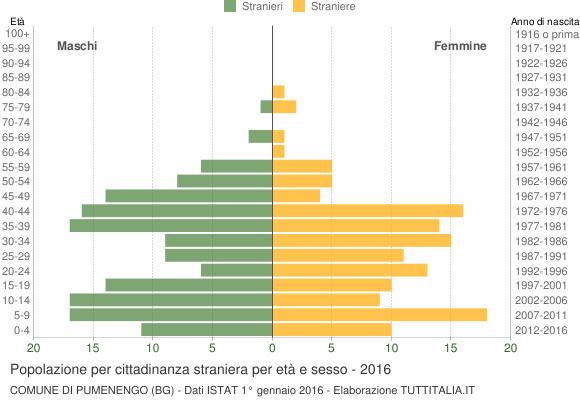 Grafico cittadini stranieri - Pumenengo 2016