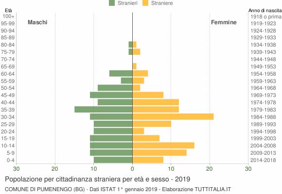 Grafico cittadini stranieri - Pumenengo 2019