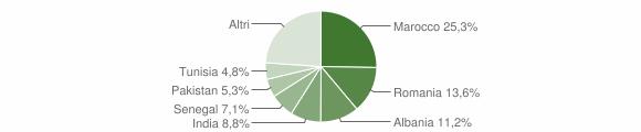 Grafico cittadinanza stranieri - Adro 2010