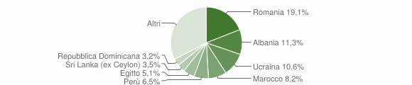 Grafico cittadinanza stranieri - Biassono 2019