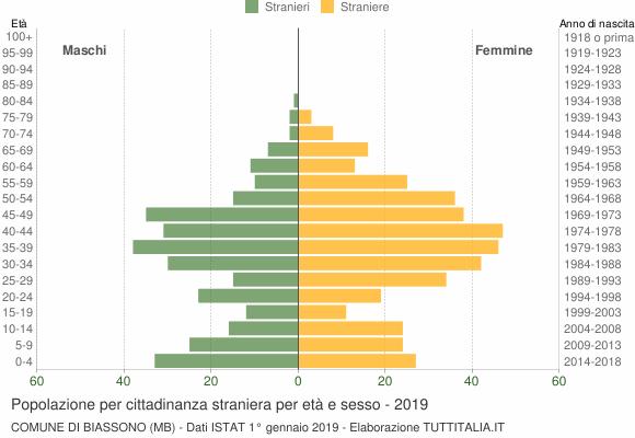 Grafico cittadini stranieri - Biassono 2019