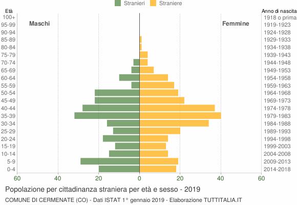 Grafico cittadini stranieri - Cermenate 2019