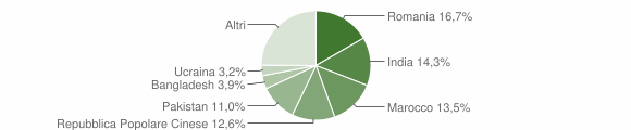 Grafico cittadinanza stranieri - Lograto 2011