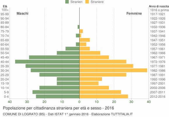 Grafico cittadini stranieri - Lograto 2016