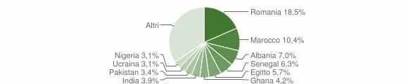 Grafico cittadinanza stranieri - San Zeno Naviglio 2008
