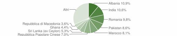 Grafico cittadinanza stranieri - Castenedolo 2010