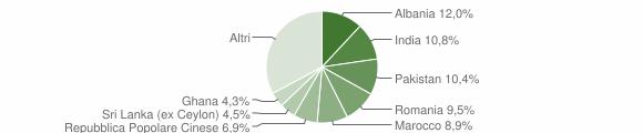 Grafico cittadinanza stranieri - Castenedolo 2011