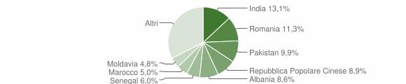 Grafico cittadinanza stranieri - Castenedolo 2019