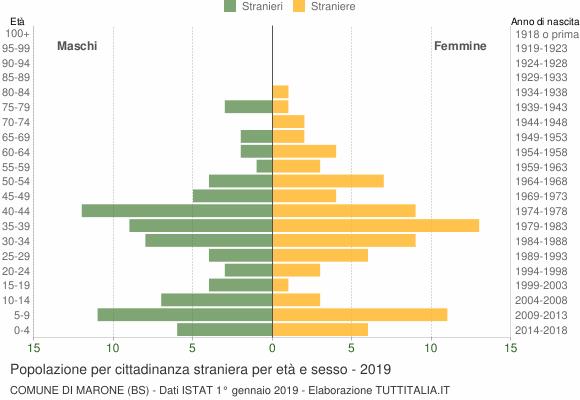 Grafico cittadini stranieri - Marone 2019