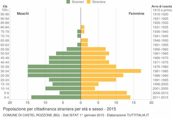 Grafico cittadini stranieri - Castel Rozzone 2015