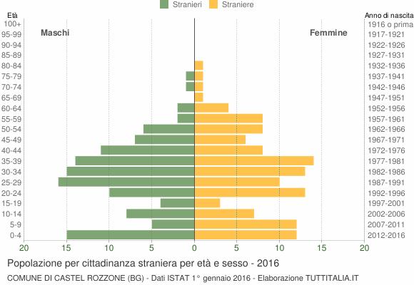 Grafico cittadini stranieri - Castel Rozzone 2016