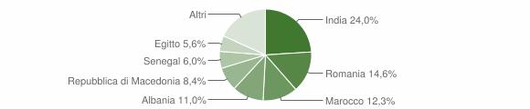 Grafico cittadinanza stranieri - Pontevico 2013