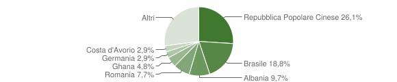 Grafico cittadinanza stranieri - Ponti sul Mincio 2011