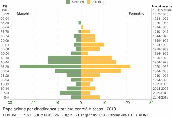 Grafico cittadini stranieri - Ponti sul Mincio 2019