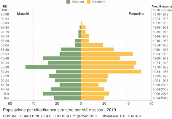 Grafico cittadini stranieri - Casatenovo 2019