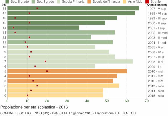 Grafico Popolazione in età scolastica - Gottolengo 2016