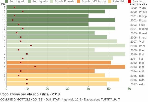 Grafico Popolazione in età scolastica - Gottolengo 2018